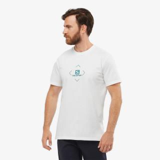 SALOMON t-shirt SALOMON COTTON TEE M Wh/Trellis/Pacific
