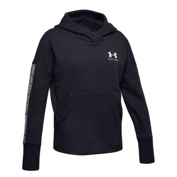 SPORTSTYLE FLEECE HOODY